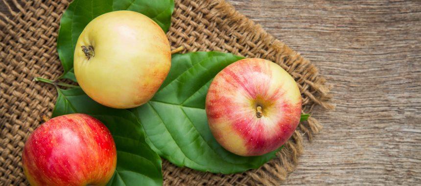 Welke appels heb ik nodig voor appelmoes maaltijden?